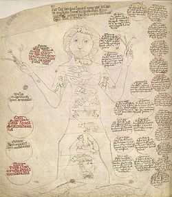 Medical Astrology-Man.jpg